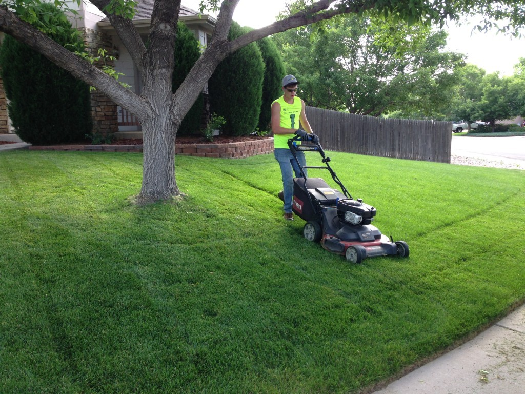 Lawn Service-Mesquite TX Landscape Designs & Outdoor Living Areas-We offer Landscape Design, Outdoor Patios & Pergolas, Outdoor Living Spaces, Stonescapes, Residential & Commercial Landscaping, Irrigation Installation & Repairs, Drainage Systems, Landscape Lighting, Outdoor Living Spaces, Tree Service, Lawn Service, and more.