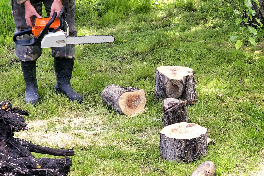 Tree Service-Mesquite TX Landscape Designs & Outdoor Living Areas-We offer Landscape Design, Outdoor Patios & Pergolas, Outdoor Living Spaces, Stonescapes, Residential & Commercial Landscaping, Irrigation Installation & Repairs, Drainage Systems, Landscape Lighting, Outdoor Living Spaces, Tree Service, Lawn Service, and more.